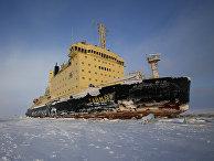 Атомный ледокол «Таймыр» в Ямало-Ненецком автономном округе