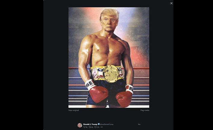 Скриншот из Твиттера Дональда Трампа