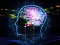 Изображение мозга человека