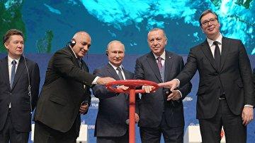Рабочий визит президента РФ В. Путина в Турецкую Республику