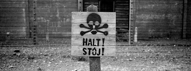 Деревянный знак «Стоп» у забора с колючей проволокой в Освенциме