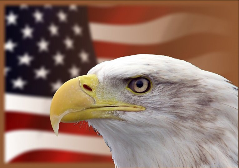 Орел и американский флаг
