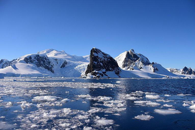 Южные Шетландские острова, Антарктида, 9 февраля 2020 года