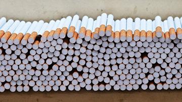 Цех производства сигарет табачной фабрики