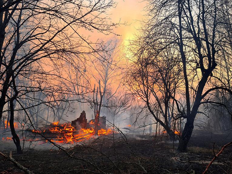 Пожар горит в зоне отчуждения вокруг Чернобыльской АЭС, недалеко от села Раховка