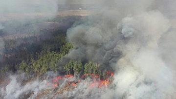 Аэрофотосъемка лесного пожара в 30-километровой зоне отчуждения вокруг Чернобыльской АЭС