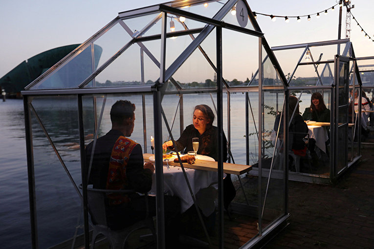 Посетители «карантинных оранжерей» в Амстердаме