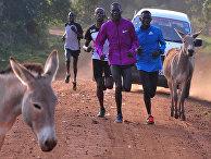 Тренировка бегунов в Итене, Кения