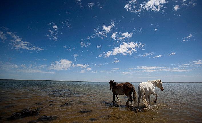 Аральское море в Казахстане