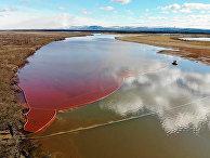 Ликвидация последствий разлива нефтепродуктов в Норильске
