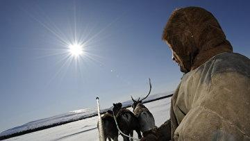 Праздник северных народов - День оленевода