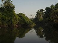 Река Питчача в Бразилии
