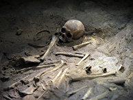 Останки жертв Нанкинской резни в Мемориальном музее в Нанкине
