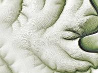 Спутниковый снимок района реки Марха в Сибири
