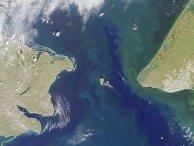Берингов пролив. Острова Большой Диомед и Малый Диомед в центре кадра