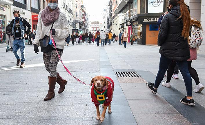 Подготовка к Рождеству в Мадриде