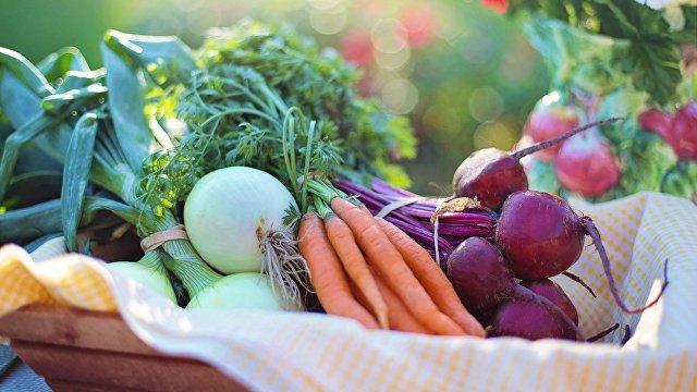 Дешевого борща не будет. Цены на овощи выросли и сильно не снизятся (Вести, Украина)
