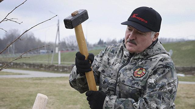 Читатели Дейли мейл о Лукашенко: еще у одного крышу снесло. Возраст никого не щадит