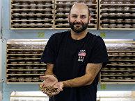 Кувейтский бизнесмен Джассем Буаббас показывает супер-червей на своей ферме в Кабаде