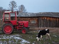 Деревня в Томской области
