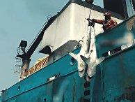 Фильм, после которого тысячи людей перестали есть рыбу