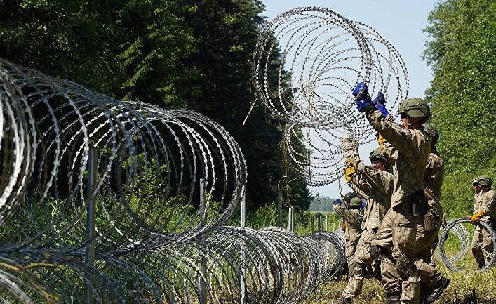 Солдаты литовской армии устанавливают колючую проволоку на границе с Беларусью