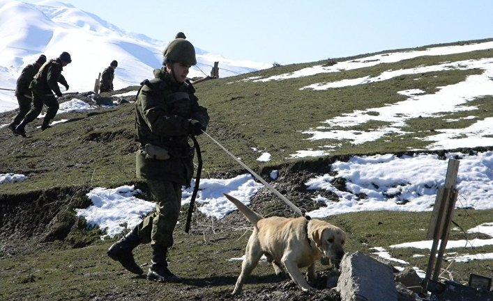Саперы 201-й российской военной базы в Таджикистане ведут разминирвание учебно-тренировочного полигона Ляур