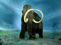 Шерстистый мамонт
